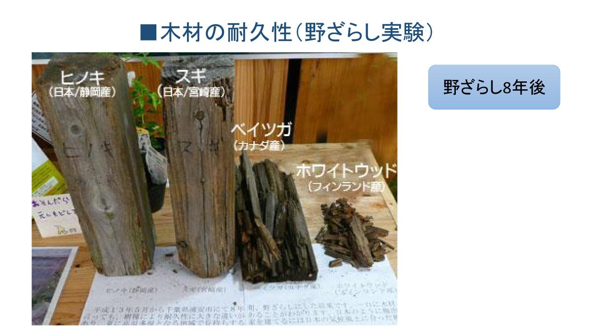 木材の耐久性(野ざらし実験)